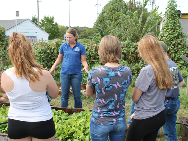 Students participate in garden activity
