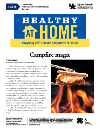 Front page of newsletter, click link for PDF